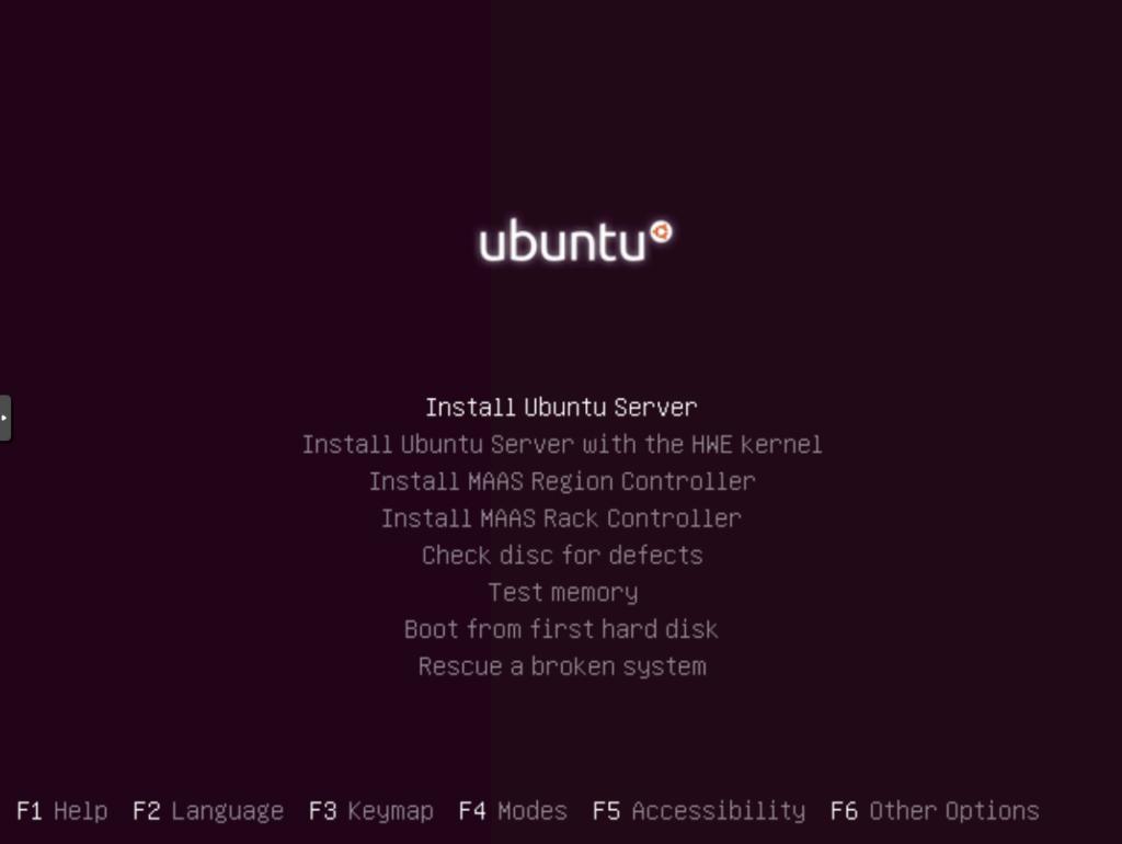 Ubuntu Installation: Auswahl der Optionen zur Instalation
