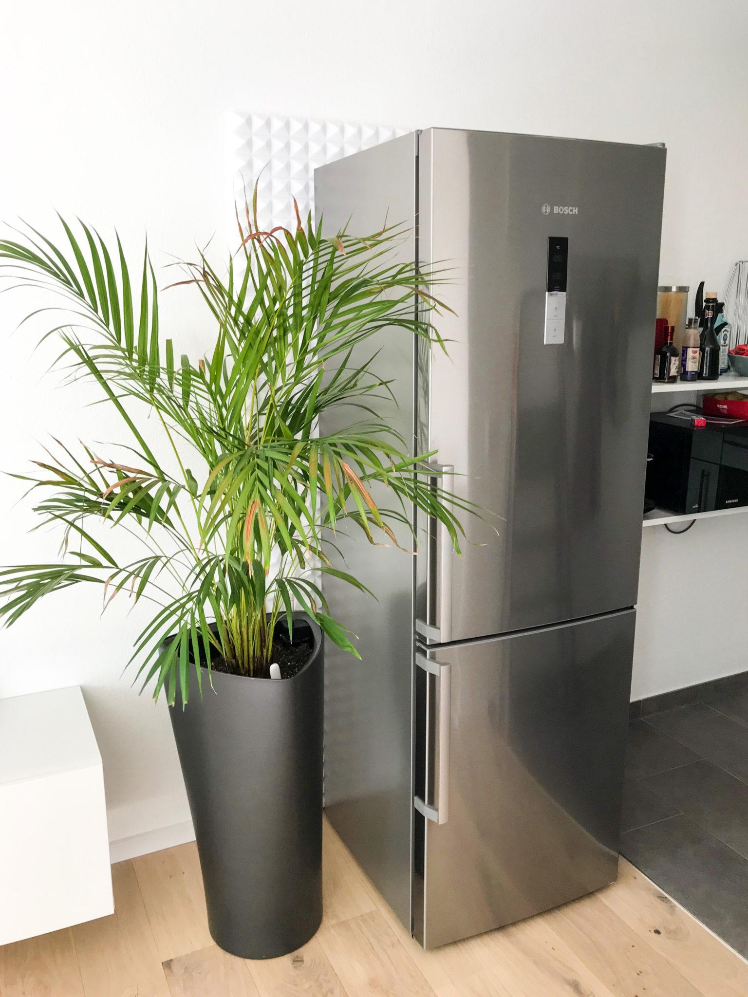 Extrem leiser Kühlschrank / Kühl-Gefrier-Kombination in ...